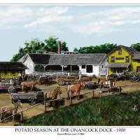 POTATO SEASON AT THE ONANCOCK DOCK Art Prints & Posters by Patrick Belote