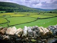 Muker, Swaledale Valley, Yorkshire, United Kingdom