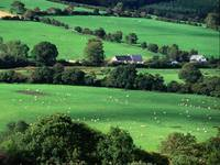 Fields and Farmhouses of County Cork, Ireland
