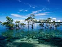 Havelock Island, Andaman and Nicobar Islands, Indi