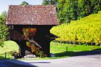 Swiss Farmhouse in a Vineyard