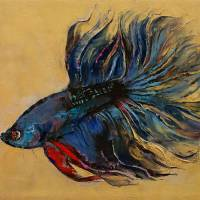 Betta Fish Art Prints & Posters by Michael Creese