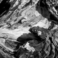 Driftwood in black and white Art Prints & Posters by Robert Estes