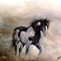 Pinto mist Art Prints & Posters by Lyn Banks