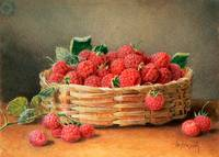 A Still Life of Raspberries in a Wicker Basket