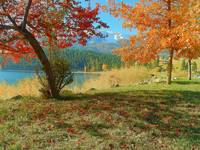 Colours Of Autumn Surrounding The Lake