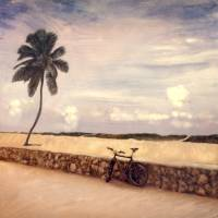 Solitude, Miami Beach,FL Art Prints & Posters by Joe Gemignani