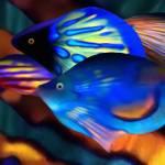 Coral Reef Fantasia