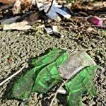 """""""Green Crush"""" by liquidsunshine"""