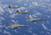 Two F-15 Eagles and F-22 Raptors fly in formation