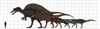 Spinosauridae size chart