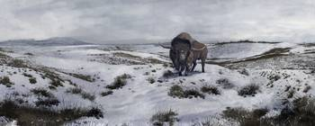 A Bison latifrons in a winter landscape during the