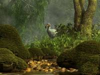 A Dodo bird hides in a dense jungle near a stream