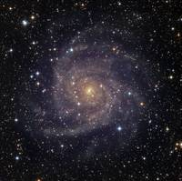 IC 342 an intermediate spiral galaxy in the conste