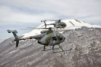 Two Breda Nardi NH-500 helicopters of the Italian