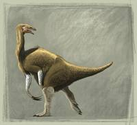 Nothronychus mckinleyi dinosaur of the Cretaceous