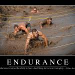 """Endurance: Inspirational Quote and Motivational Po"" by stocktrekimages"