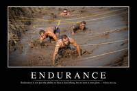 Endurance: Inspirational Quote and Motivational Po