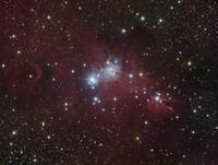 The NGC 2264 region showing the Cone Nebula, Chris