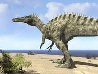 A carnivorous Suchomimus wanders a beach on the an