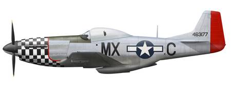 P-51D Mustang of the 78th Fighter Group