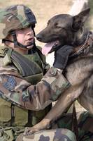 A dog handler and his military working dog
