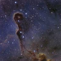 The Elephants Trunk Nebula in the star cluster IC