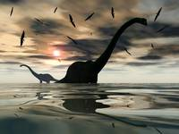 Diplodocus dinosaurs bathe in a large body of wate