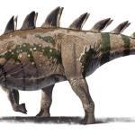 """""""Tuojiangosaurus multispinus dinosaur from Shishugo"""" by stocktrekimages"""