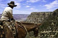 Cowboy on the Bright Angel Trail at Grand Canyon
