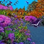 """Garden Landscapes"" by frankreggio"