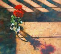 Red Rose Shadow Study