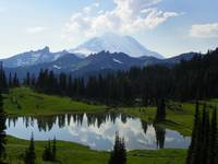 Mount Rainier - Majesty Of Mother Nature