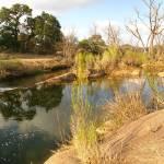 """""""Sandy Creek Near Enchanted Rock"""" by MarksClickArt"""