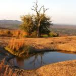 """Vernal Pond at Enchanted Rock"" by MarksClickArt"