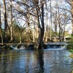 """Waterfall VII on Cypress Creek, Wimberley, Tx"" by MarksClickArt"