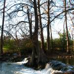 """Waterfall V on Cypress Creek, Wimberley, Tx"" by MarksClickArt"