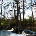 """Waterfall V on Cypress Creek, Wimberley, Tx"" by MarksClickArt"