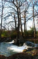 Waterfall V on Cypress Creek, Wimberley, Tx
