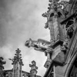 """Gargoyle in black and white"" by SueLeonard"