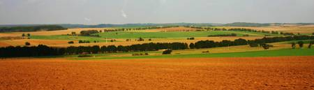 Rolling Fields of the Czech Republic
