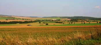 Fields Surrounding Mohelno, Czech Republic