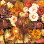 """""""Antique Roses"""" by JessicaJenney"""