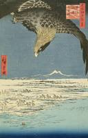 Eagle Over 100,000 Acre Plain at Susaki, Fukagawa