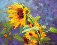 Sunflowers on Hot Summer Day