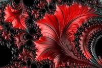 Red on Black Macro - A Fractal Abstract