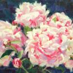 """Peonies in the Sun"" by KimStenbergFineArt"