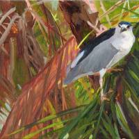 JungleMoment Art Prints & Posters by Nancy Darling
