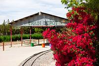 Bougainvillea and Train Depot