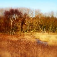 Broadland inlet Art Prints & Posters by Valerie Anne Kelly